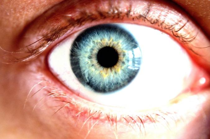 blue-eye-macro