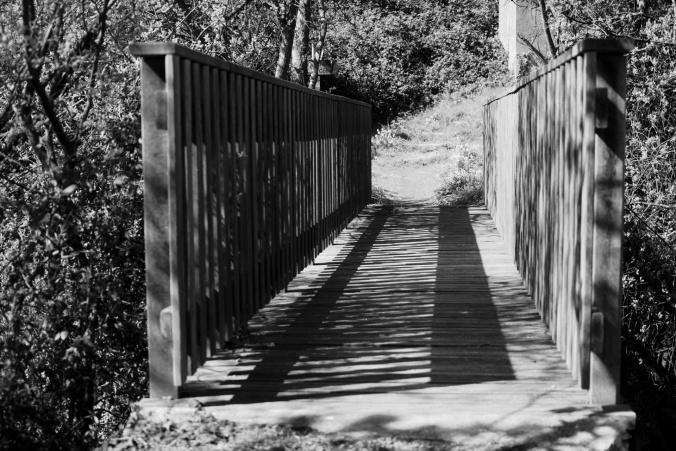 pont-en-bois-.jpg
