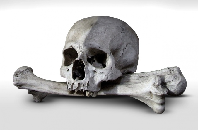 real-skull-and-crossed-bones-1525964508QKU