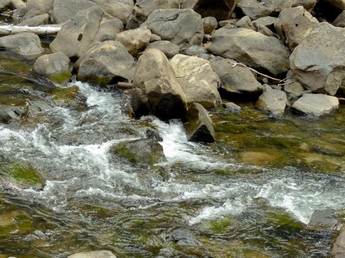 rushing-green-river-and-rocks